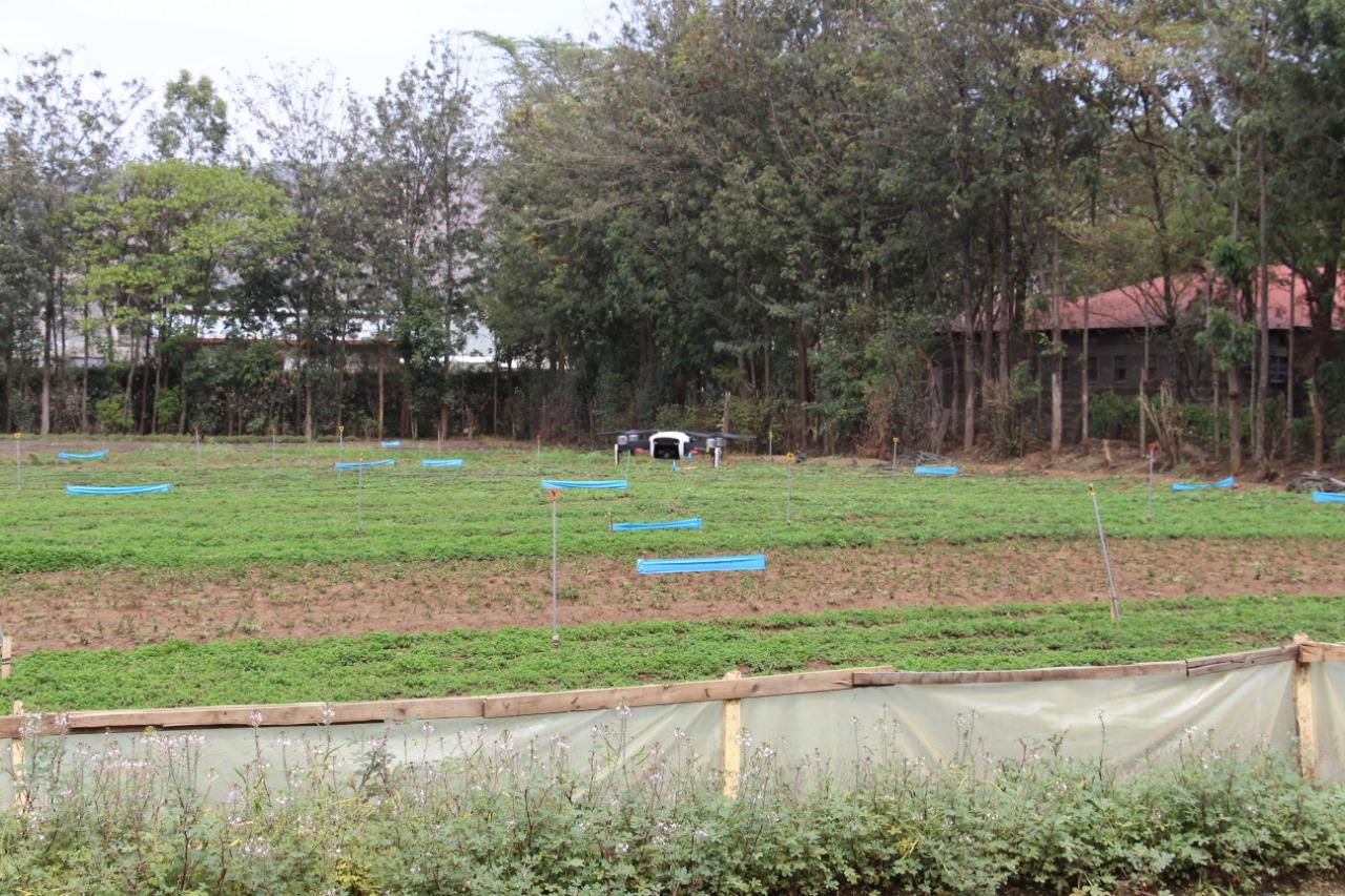 Eunidrip irrigation systems